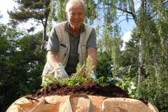 Gerry-planting-out-ferns